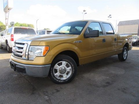 well equipped 2009 Ford F 150 XLT RWD crew cab for sale