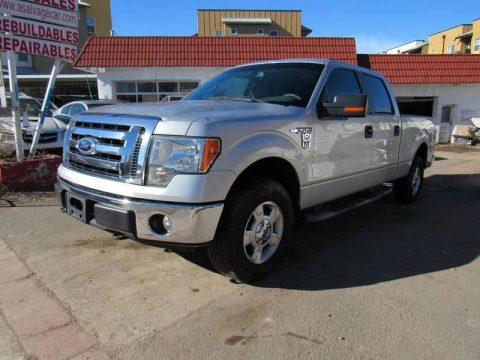 hail damage 2009 Ford F 150 FX4 crew cab for sale