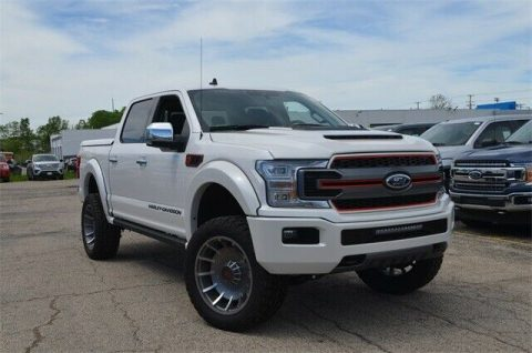 brand new 2019 Ford F 150 Lariat crew cab for sale